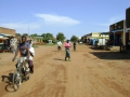 Northwest Smallholders Development Project 191